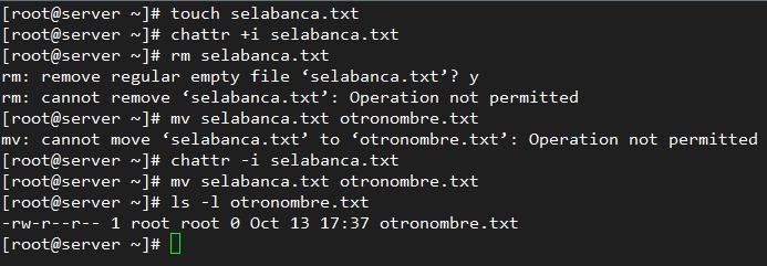Uso de chattr para impedir que un archivo sea borrado o renombrado