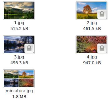 Manipulación de imágenes - Uso de montage para crear miniaturas
