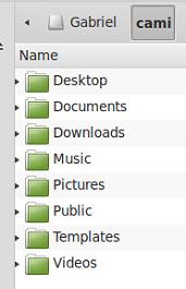 Hacer backups en Linux Mint: progreso del backup