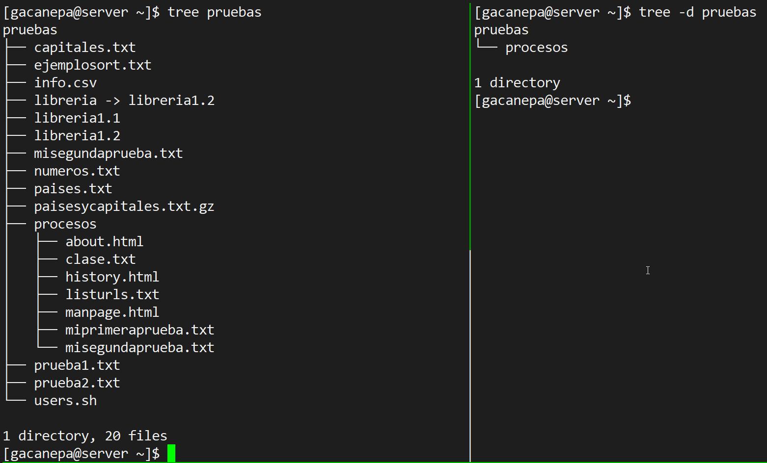 Visualización de directorios en forma de árbol con tree