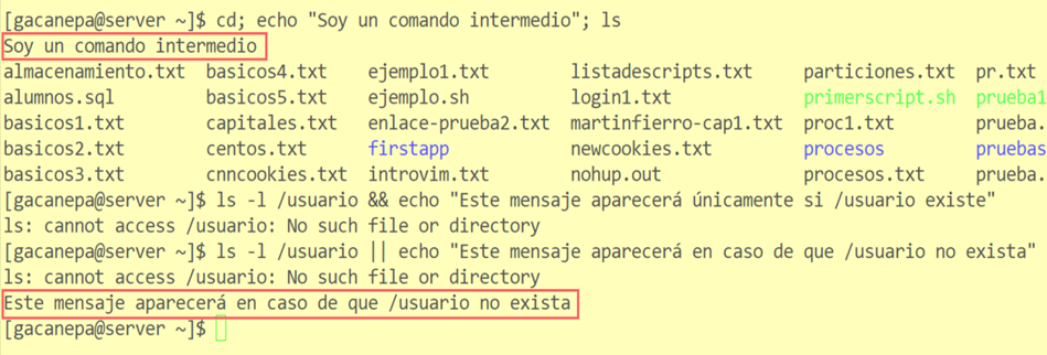Ejemplos de ejecución encadenada de comandos con Bash